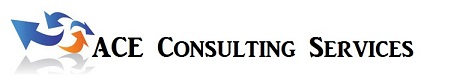 ACE Consulting Services, Small Business Consulting